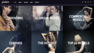 FashionTheme Layout